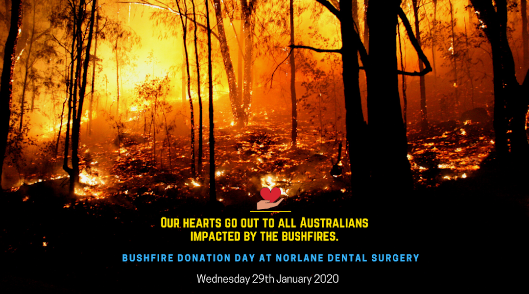 """Bushfire Donation Day"" at Norlane Dental Surgery (Wednesday, 29th of Jan 2020)"