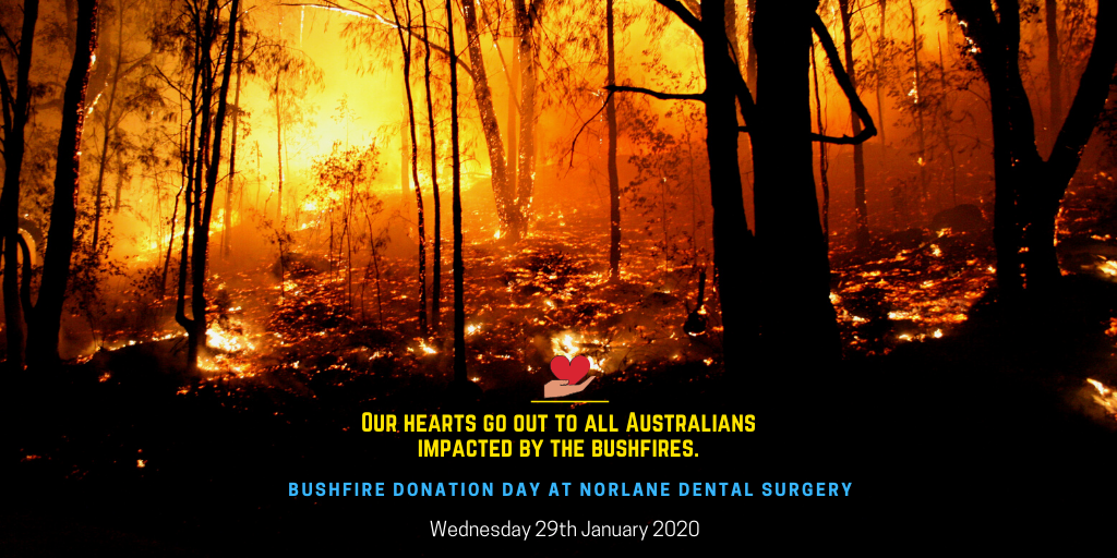 bushfire donation day at norlane dental surgery banner